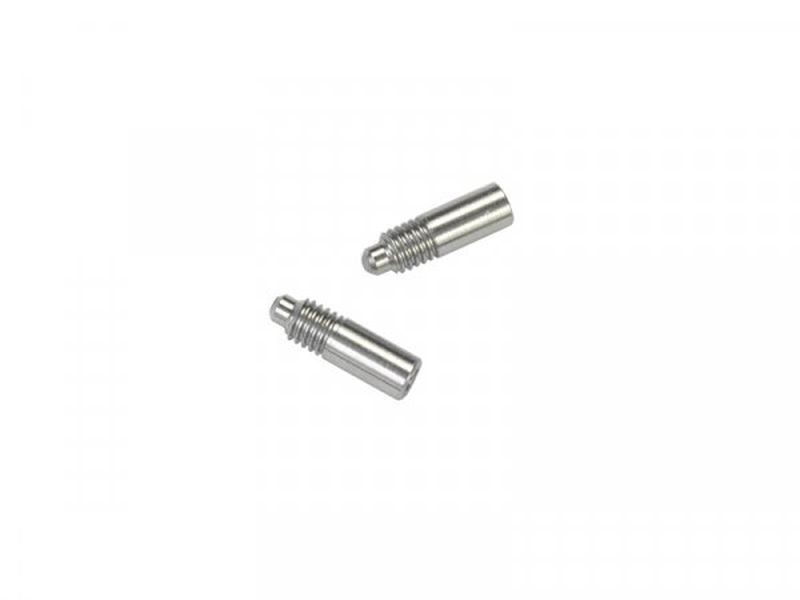 Side bearing screw (2) F110 SF4 (SER411416)