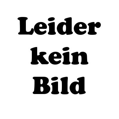 SLVR AC Lader 350mAh (5Zellen)